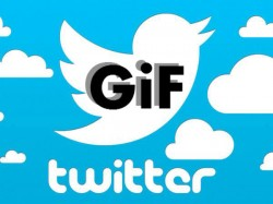 Twitter now supports large GIFs