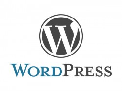 Top 5 essential Wordpress Plug-ins of all time