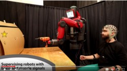 MIT researchers develop a robot which is controlled by human brain