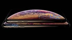 Apple iPhone XS, iPhone XS Plus, Apple Watch Series 4 renders leaked: Bigger screen, new color