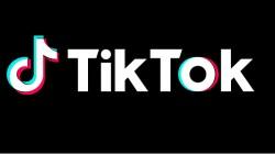 Top Five TikTok Alternatives In India For Short Videos