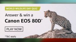 Amazon World Wildlife Day Quiz Answers: Here's Your Chance To Win Canon EOS 80D