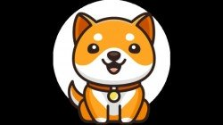 Baby Dogecoin Is Elon Musk's Next Big Thing; Twitter Reacts To New Meme Crypto