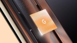 Is Google Tensor Rebranded Samsung Exynos Processor?