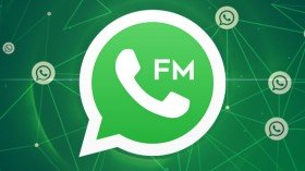 FMWhatsApp APK Download: How to Download FMWhatsApp Latest Version On Android?