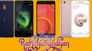 Raksha Bandhan Tech Gift Ideas: Best Budget phones to Gift Your sister