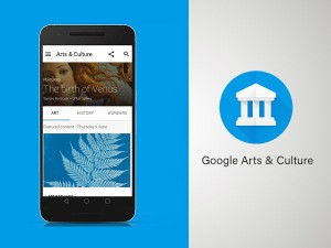 How To Use Google Arts And Culture App In India