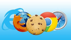 7 Types Browser Cookies You Should Know