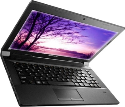 Lenovo Essential B490 (59-384796) Laptop (3rd Gen Ci5/ 2GB/ 500GB/ DOS)