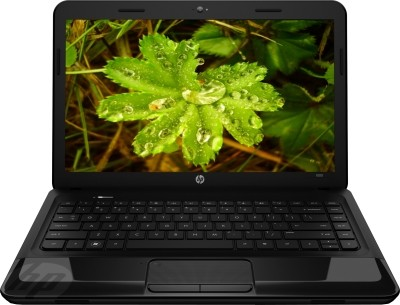 HP Pavilion 1000-1B02AU Laptop (APU Dual Core/ 2GB/ 320GB/ DOS)
