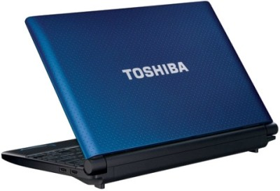 Toshiba NB520-A1115 Netbook (1st Gen ADC/ 2GB/ 320GB/ Win7 Starter)