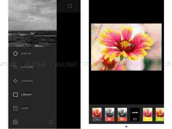 Bored with Instagram? Here Are 5 Best Alternatives to