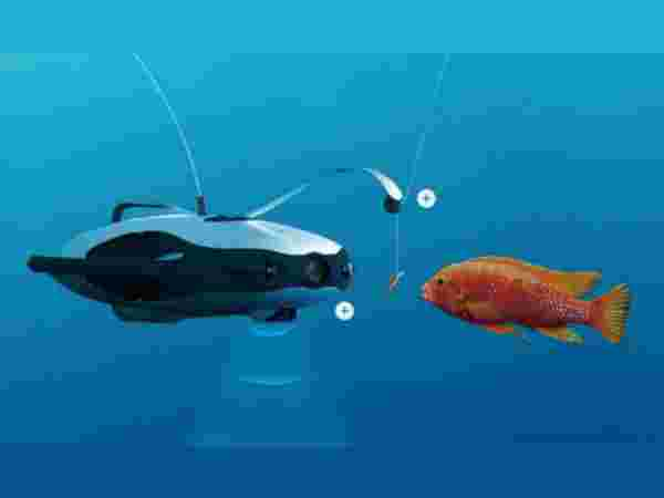 PowerRay FishFinder Robot