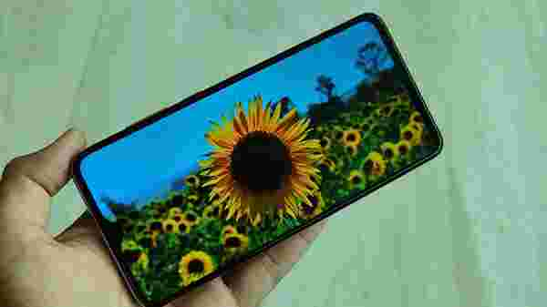 Display- 6.53-inch IPS LCD panel, HDR-Enabled, 91.6% Screen-to-Body Ratio
