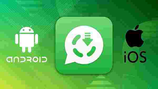 Steps To Save WhatsApp Status Videos And Images On Smartphones