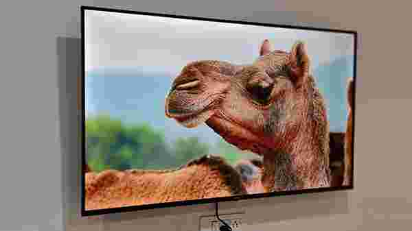 Display- Vibrant 4K VA Panel With HDR 10, HLG And Dolby Vision